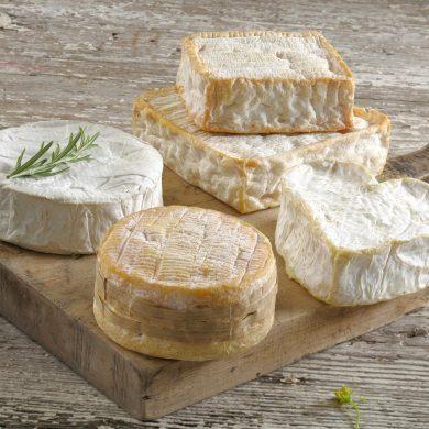 La strada dei formaggi AOC