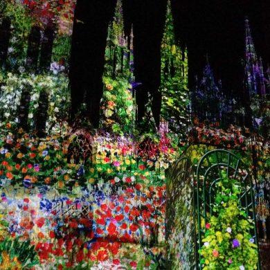 Lo spettacolo della Cattedrale di Luce a Rouen