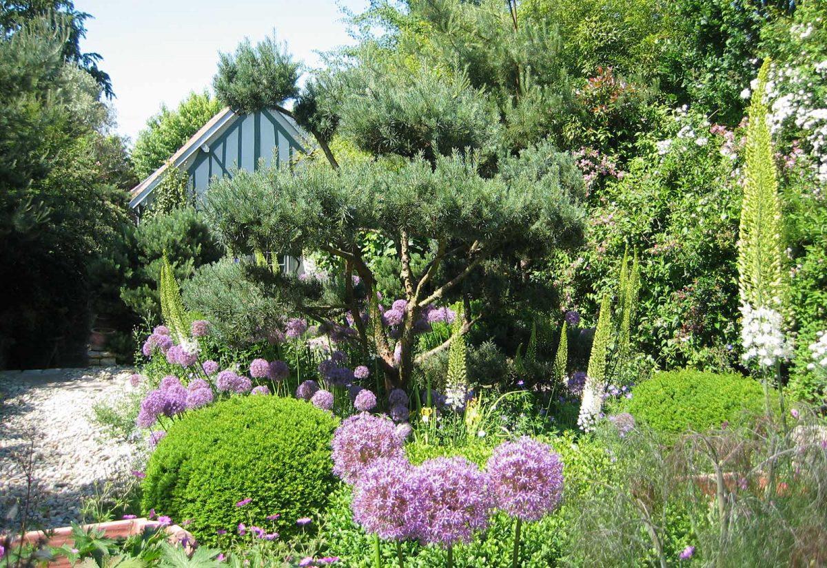 Le jardin d'Agapantheà Grigneuseville